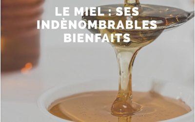 Le miel : ses indénombrables bienfaits